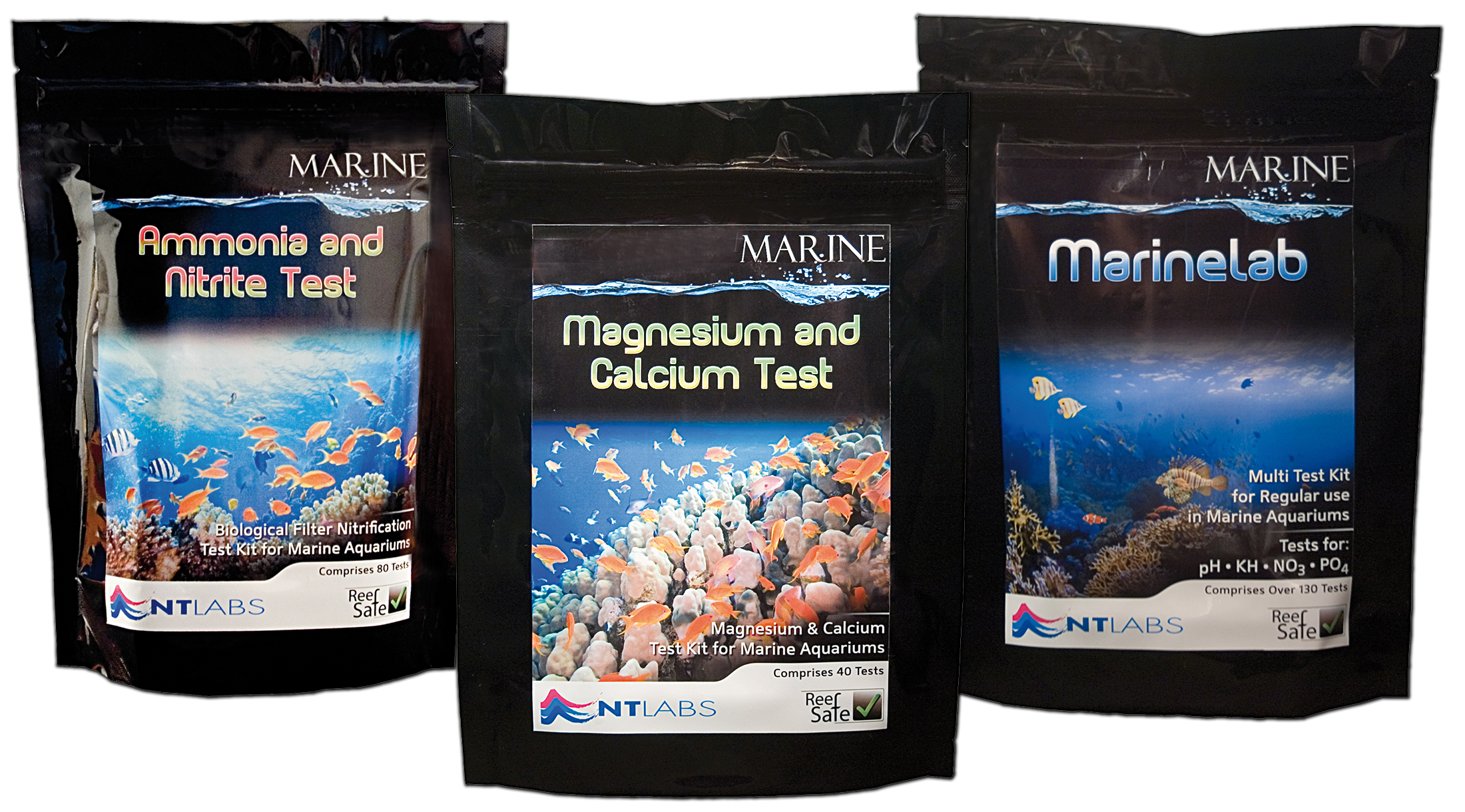 Guía para principiantes de acuarios marinos