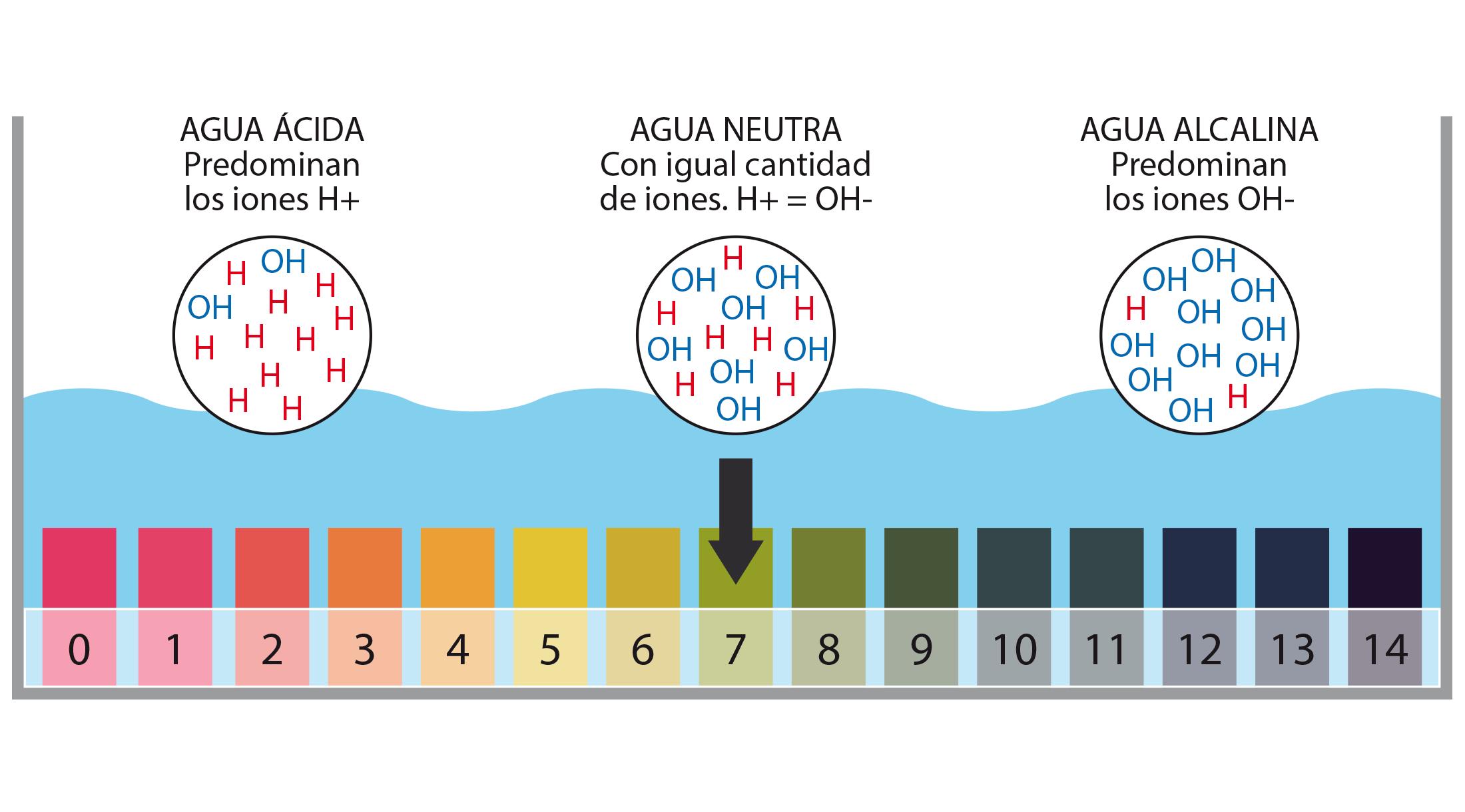 pH ¿Qué es el potencial de hidrógeno?