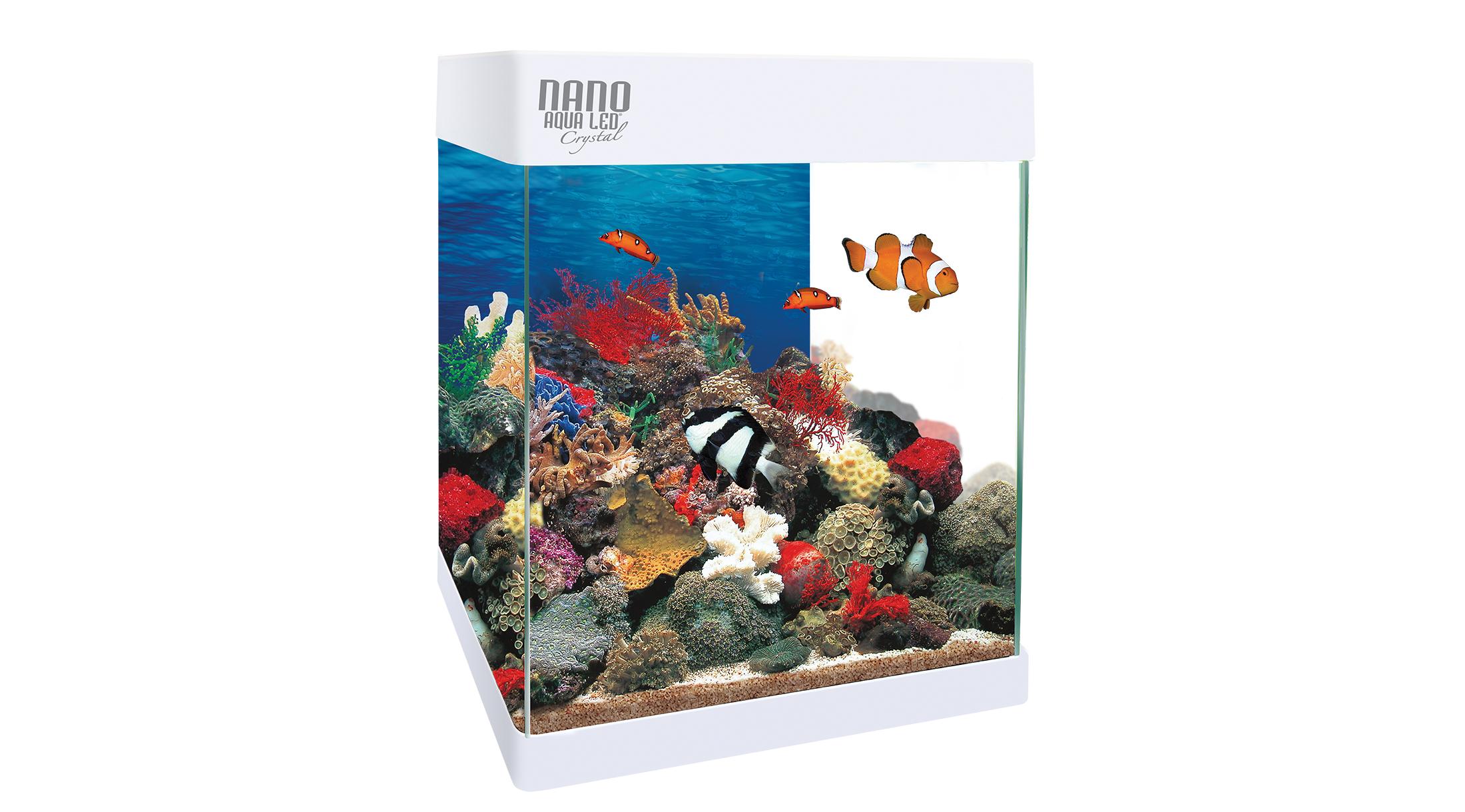 Acuario Nano Reef